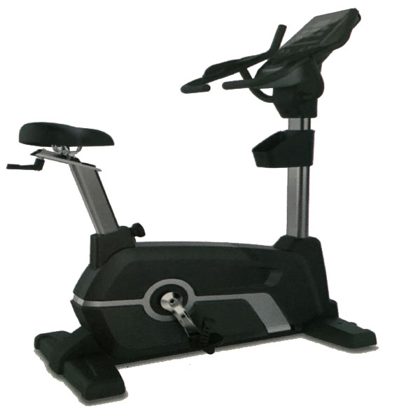 CL-010 Comm Upright Magnetic Bike