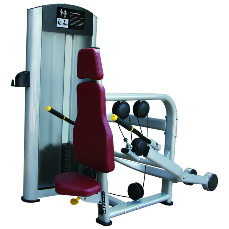 ML8807 Seated Tricep Extention